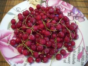 Красная смородина ягоды
