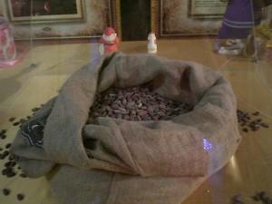 какао-бобы для шоколада