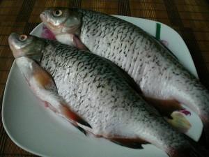 рыба плотва для запекания