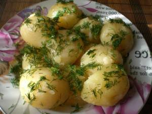молодая картошка с маслом и укропом