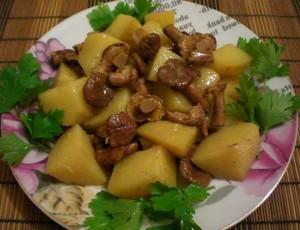 лисички с картошкой на сливочном масле
